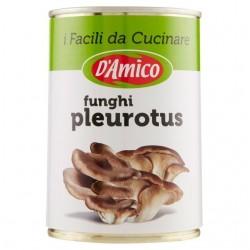 D'AMICO FUNGHI PLEUROTUS AL...