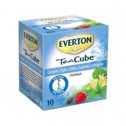EVERTON CUBE TISANA...